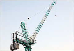 Everdigm Tower Crane - Luffing type